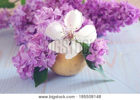 Spring purple and white flower still life soft still life horizontal background. Blooming closeup romantic decorative template. Lilac floral soft pastel decoration.