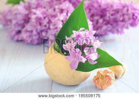 Spring purple lilac flower still life horizontal background. Blooming romance decoration macro template.