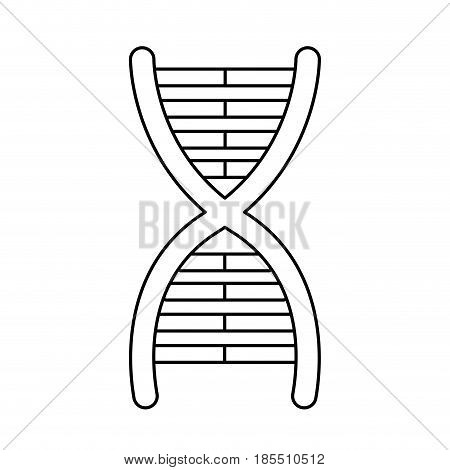 dna molecule chromosome biology genetic line vector illustration