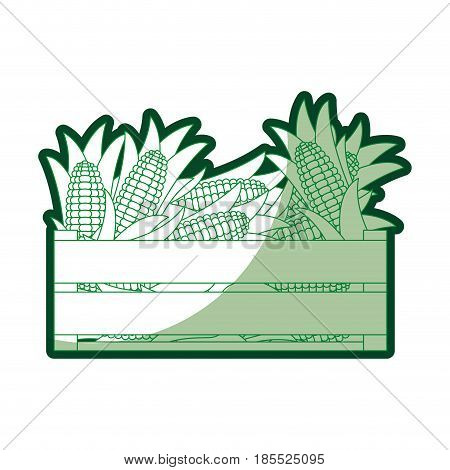 green silhouette of wooden box with corncobs vector illustration