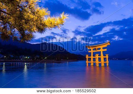 Torii in Itsukushima shine at evening
