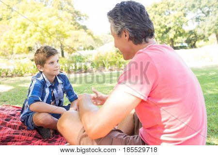 Father talking to son at picnic in park on a sunny day