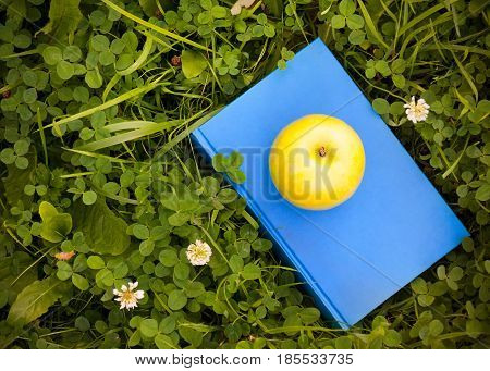 Apple on book on grass. Education concept back to school.