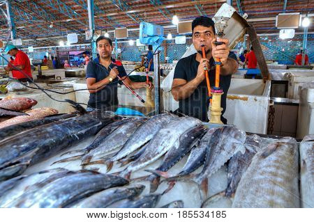 Bandar Abbas Hormozgan Province Iran - 15 april 2017: Fresh chilled fish tuna lies on the ice in a covered fish market two Persian sellers smoke a hookah near their product.
