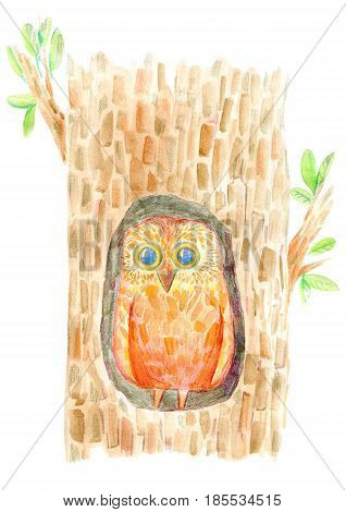 Owl in the hollow. Postcard of a Bird on a tree .Watercolor hand drawn illustration.