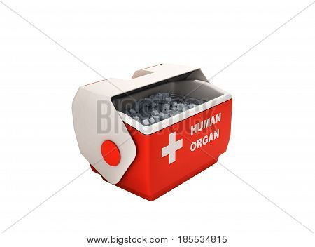 Open Human Organ Refrigerator Box Red 3D Render No Shadow