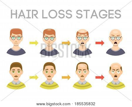 Information chart of hair loss stages and types of baldness illustrated on male head. Medical health problem growth scalp character hairstyle healthcare vector hairline view.