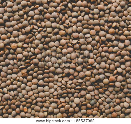 Lentils Picture, Faded Vintage Look