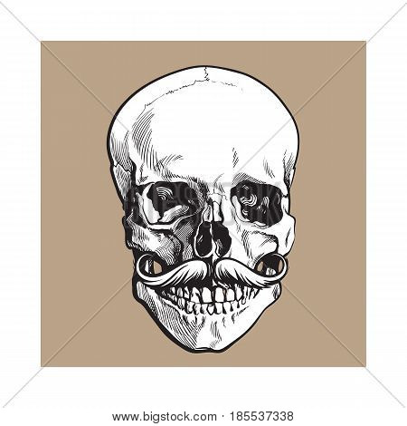 Hand drawn human skull with curled upward hipster moustache, black and white sketch style vector illustration isolated on brown background. Realistic front view hand drawing of human skull