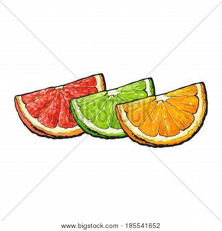 Quarter, piece of orange, grapefruit, lime, hand drawn sketch style vector illustration on white background. Hand drawing of unpeeled orange, grapefruit, lime segment, sector, quarter, piece