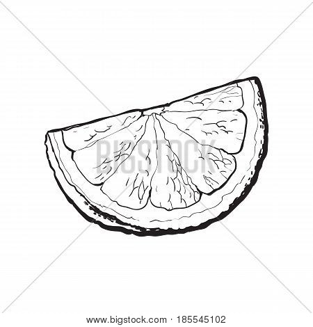 Quarter, segment, piece of ripe grapefruit, orange, black and white hand drawn sketch style vector illustration on white background. Hand drawing of unpeeled grapefruit qurter, piece