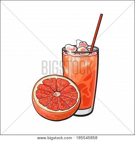 Half grapefruit and glass of freshly squeezed juice with ice and straw, sketch style vector illustration on white background. Hand drawn glass of grapefruit juice with ice and grapefruit cut in half
