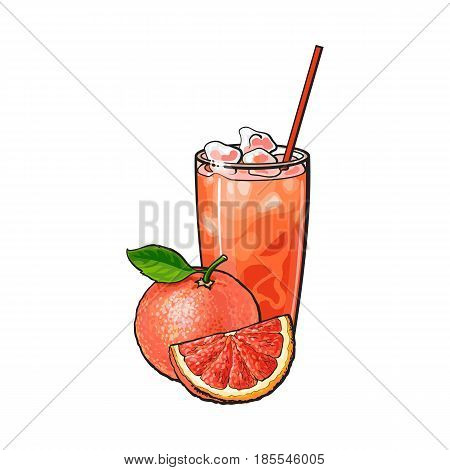 Grapefruit, whole and piece, glass of fresh juice with ice and straw, sketch style vector illustration on white background. Hand drawn glass of grapefruit juice with ice, whole grapefruit and piece