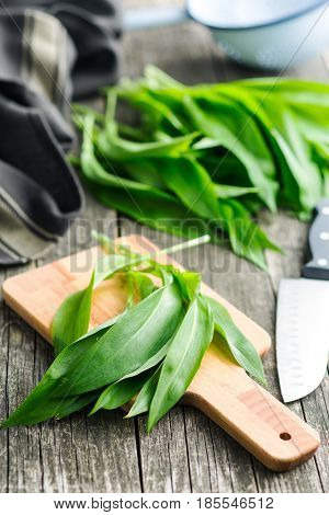 Ramson or wild garlic leaves on cutting board.