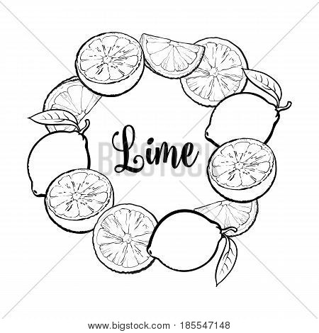 Round frame of whole and black and white half lime fruits with place for text, sketch vector illustration isolated on white background. Hand drawn lime fruits as round frame, label, banner template