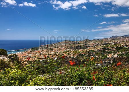 Madeira town houses of Funchal - capital of Madeira. Portugal