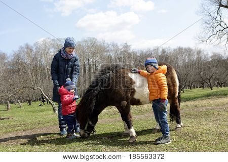 Family playing with pony on the farm
