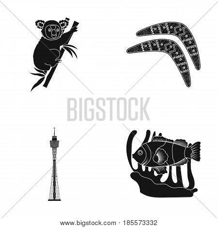 Koala on bamboo, boomerang, Sydney tower, fish clown and ammonium.Australia set collection icons in black style vector symbol stock illustration .