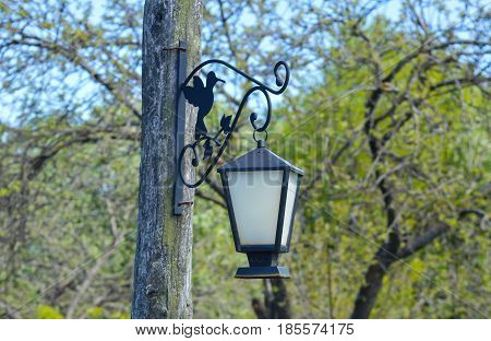 vintage forged streetlight hanging on the pole in garden