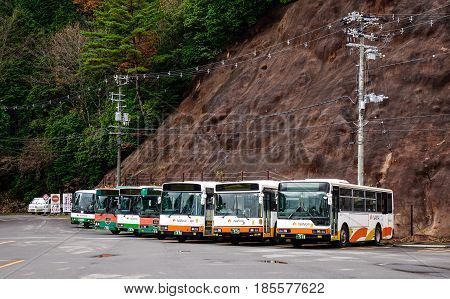Bus Parking On The National Park