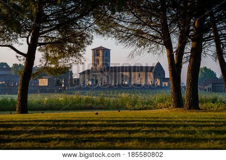 Saint Emilion, Church In Vineyard Landscape,vineyard South West Of France