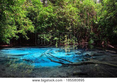 Emerald blue pool (Sra Morakot) in Krabi province, Thailand. Beautiful nature scene of crystal clear blue water in tropical rainforest.