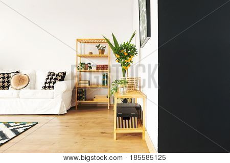 Living room with black and white wall sofa bookcase
