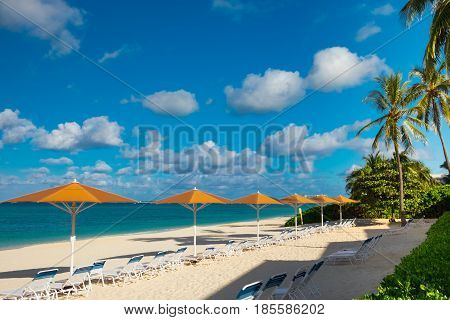 Row of parasols and sun loungers by the Caribbean sea on Seven Mile Beach, Grand Cayman