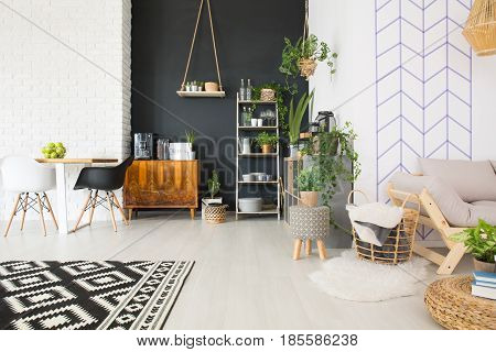 Modern black and white loft with commode table chair plants
