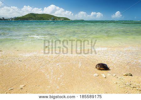 Noumea New Caledonia Beach