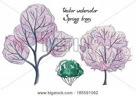 Vector set of hand drawn watercolor pictorial pink spring trees and green bush, isolated on the white background for your landscape design