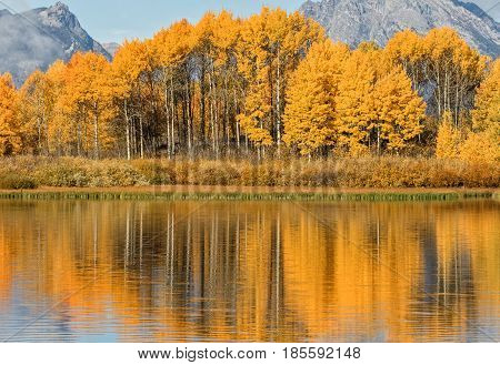 a scenic autumn reflection in Teton National Park Wyoming