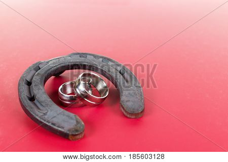 good luck horseshoe and Engagement rings relationship valentine's day