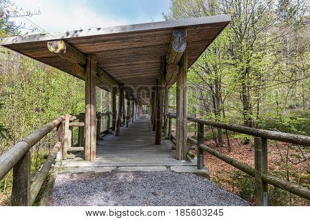 Viewing wooden footbridge for animal watching Bavaria Germany. Terrace for watching animals in the woods. Wooden bridge with a roof in the forest.