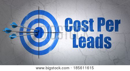 Success finance concept: arrows hitting the center of target, Blue Cost Per Leads on wall background, 3D rendering