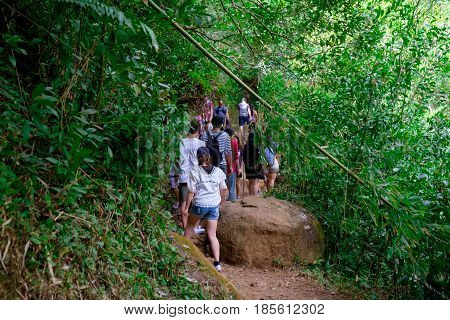 MANOA FALLS, HAWAII - FEBRUARY 20, 2016: An overwhelming crowd of people on the trail to Manoa Falls in Oahu Hawaii.