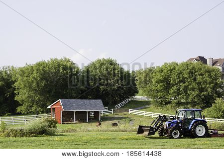 Cornwall, Quebec - August 1, 2014 -- Wide view of a tractor grooming the land in front of the stable and horses in the background near Cornwall, Ontario on a sunny day in August.