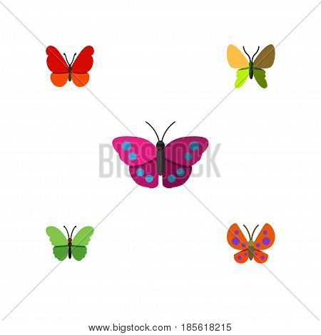 Flat Moth Set Of Moth, Monarch, Milkweed And Other Vector Objects. Also Includes Milkweed, Moth, Butterfly Elements.