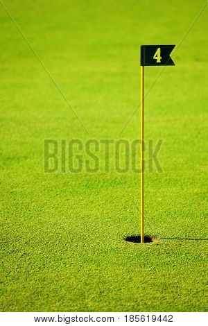 Close-up picture of green fairway at golf course with flagstick and hole