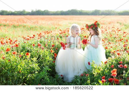 childhood, countryside, kid models, spring concept - two laughing beautiful little girls in pretty white and blue dresses with tulle skirts out in poppy field, both holding bouquet of flowers