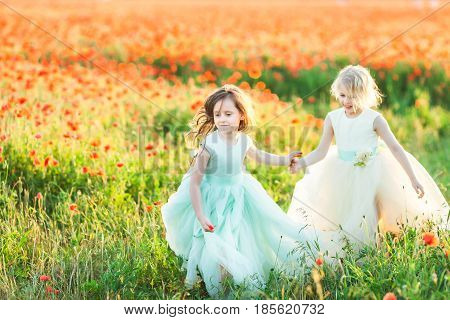 spring, princess, friendship, childcare, happy childhood, kids fashion concept - two little girls in white and blue dresses running through the poppy field arm in arm