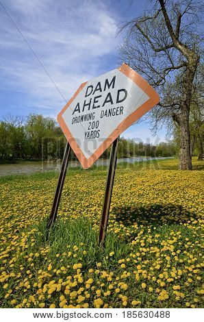 A  bent sign warning of the drowning dangers of a dam along a river surrounded by ripe dandelions