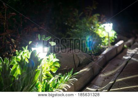 solar lanterns garden light with shrubs and rock at home