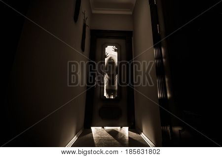 Silhouette Of An Unknown Shadow Figure With Hands On A Door Through A Closed Glass Door. Horror Conc