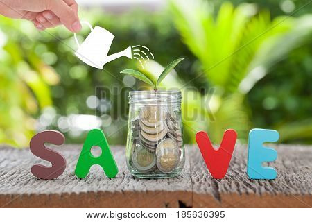Money and plant with woman hand hold watering can and tree Saving money for investment concept money in jar and plant business growth