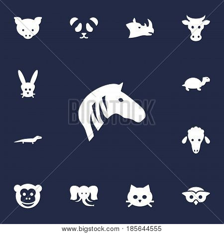 Set Of 13 Beast Icons Set.Collection Of Horse, Gecko, Kine And Other Elements.
