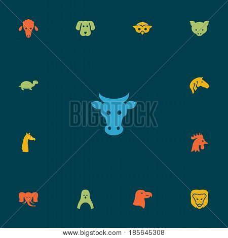 Set Of 13 Brute Icons Set.Collection Of Tortoise, Trunked Animal, Night Fowl And Other Elements.