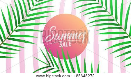 Summer sale design layout for banner, advertisement, card, poster etc. Background with trendy stripes, coconut palm leaves and gradient background.