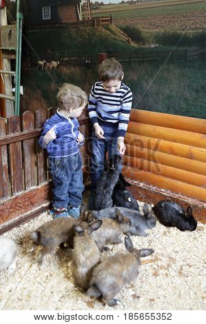 Brothers With Rabbits