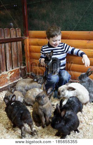 Child Feeding Rabbits